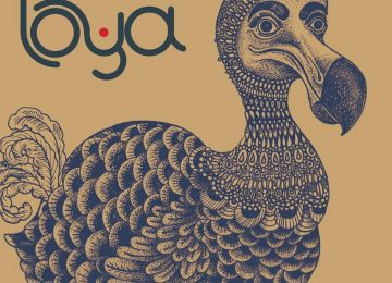 Le premier EP de Loya sort aujourd'hui sur Mawimbi !