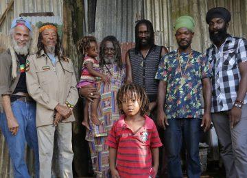 La musique des Yards,                            le reggae côté cours et jardins
